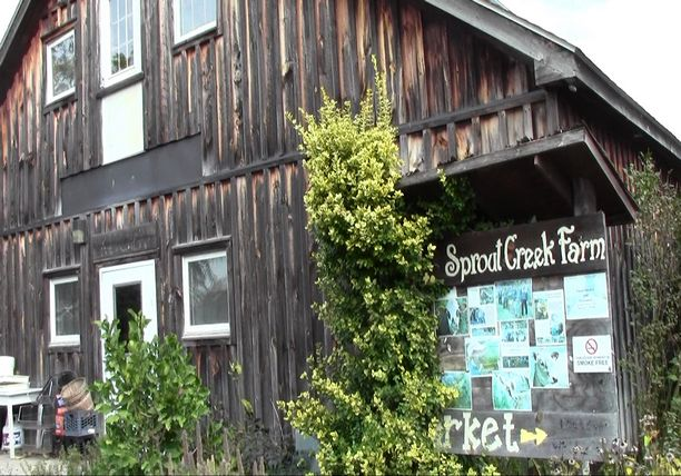 Sprout Creek Farm